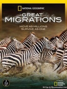 Великие миграции