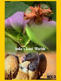 Потерянные миры Индии
