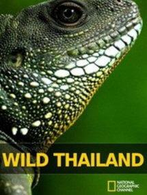 Дикая природа Таиланда