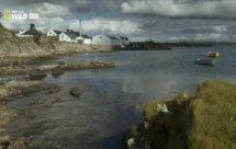 National Geographic. Дикая Шотландия: Гебридские острова - 7 серия