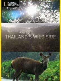 Дикие места Таиланда